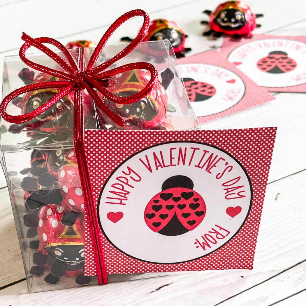 Ladybug Valentine Printable