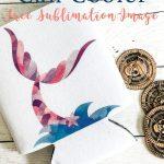 DIY Mermaid Project