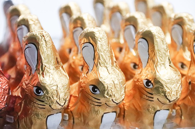 Rows of chocolate Easter bunnies