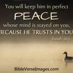 الإيمان الكتاب المقدس الآية 6