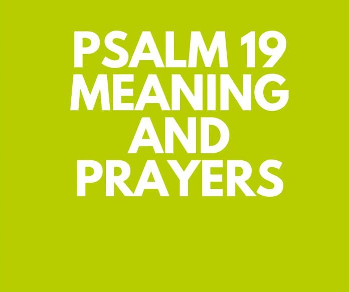 PSALM 19 ਆਇਤ ਆਇਤ ਦੁਆਰਾ