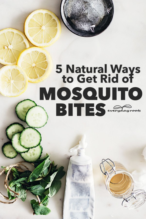 These mosquito bite remedies are all-natural, effective and will help you soothe itchy bites, while diminishing their appearance and helping them heal faster.