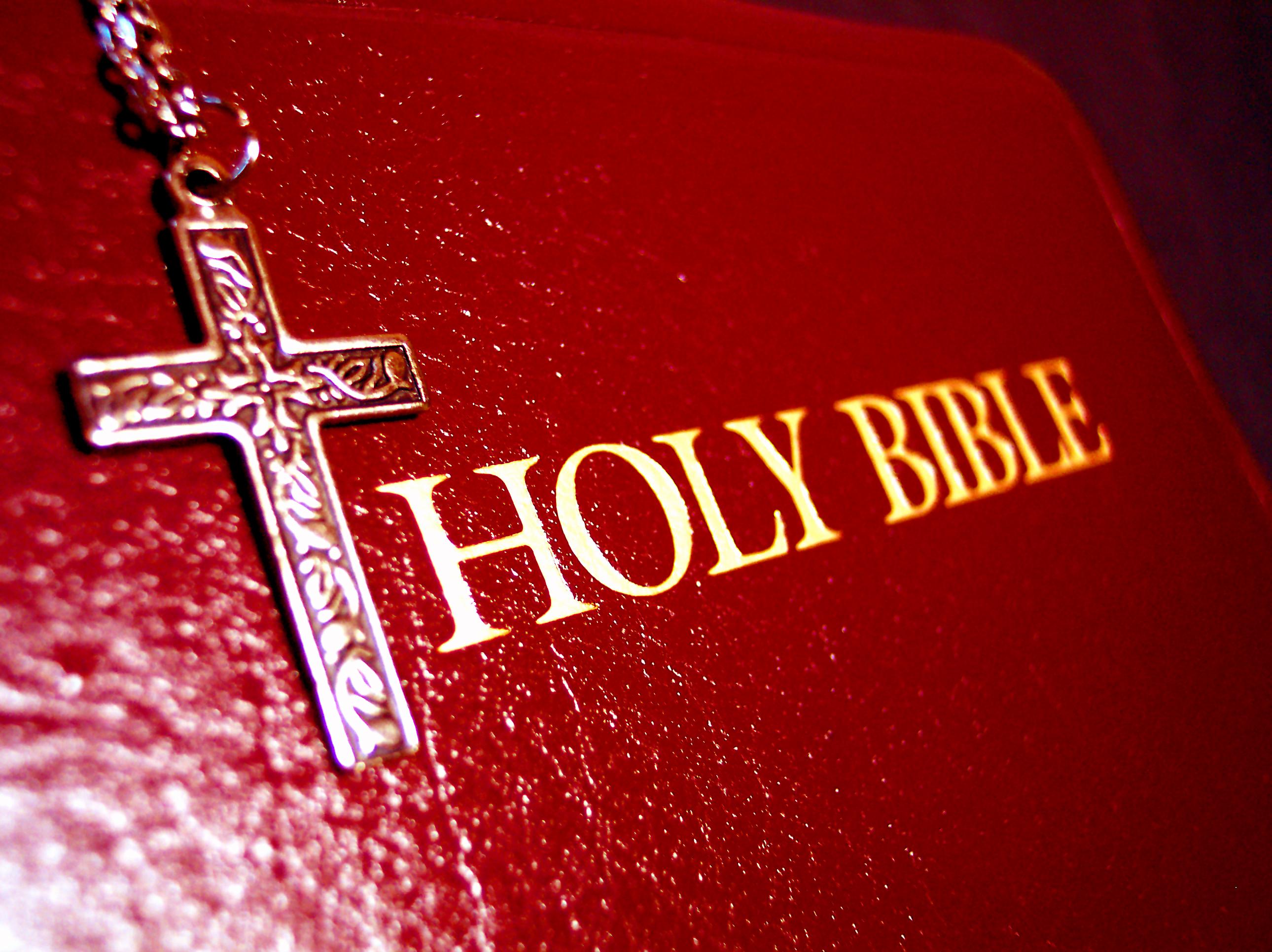 Freedom 37 Bible Verses