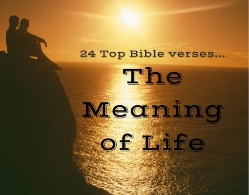 24 top bible verses meaning of life everyday servant