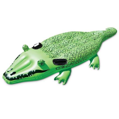 Surrender our alligators to God