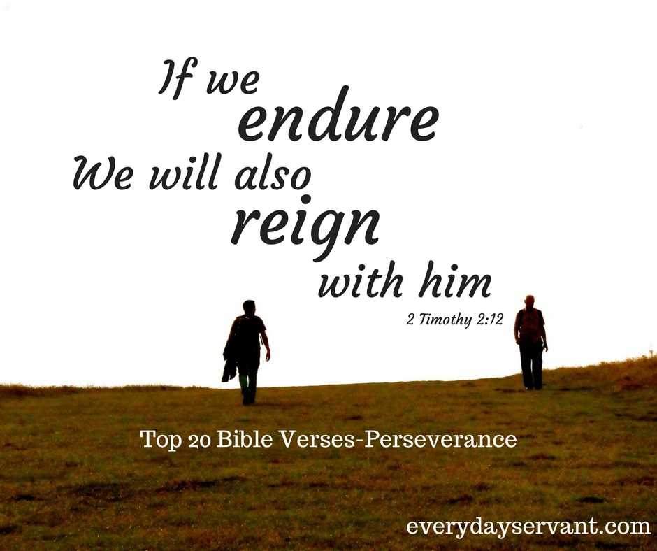 Bible Quotes About Happiness Magnificent Top 5 Bible Versespursuit Of Happiness  Everyday Servant