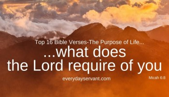 top 5 bible verses happy marriage everyday servant