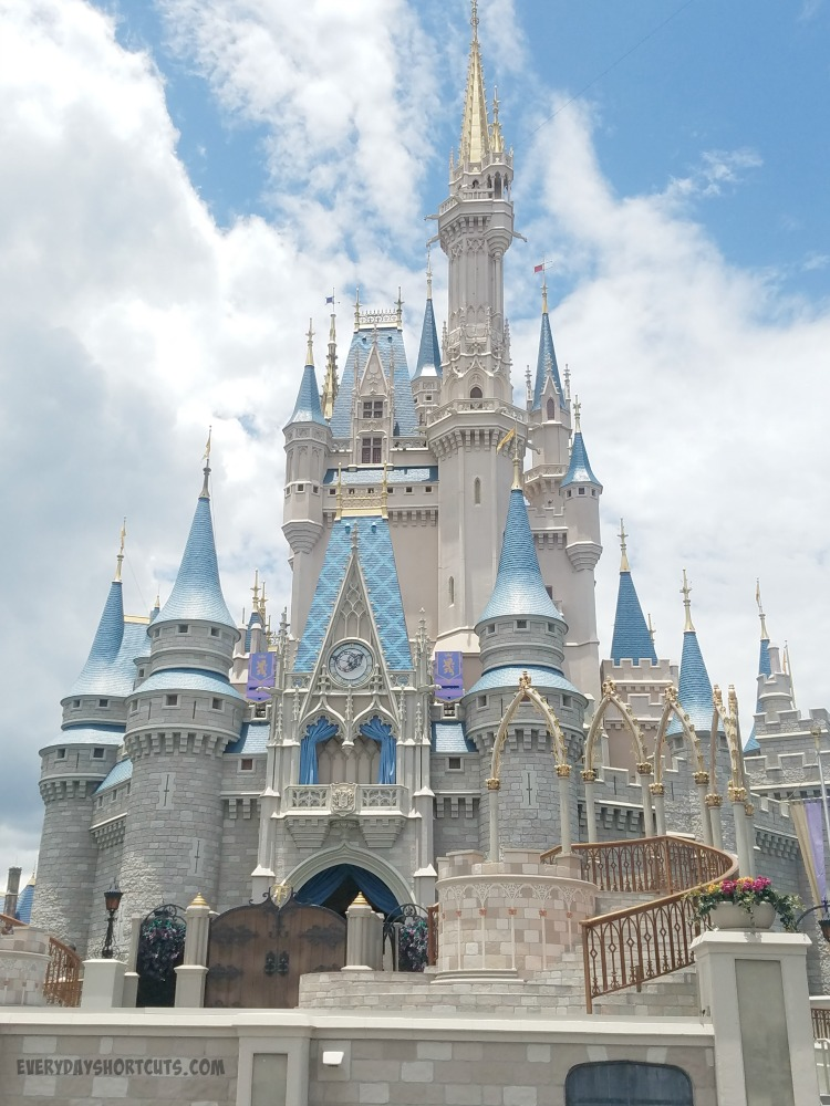 Free Disney Parks Vacation Planning DVD and Money Saving Tips