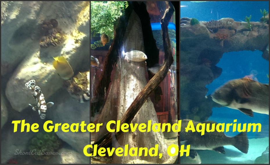 The Greater Cleveland Aquarium