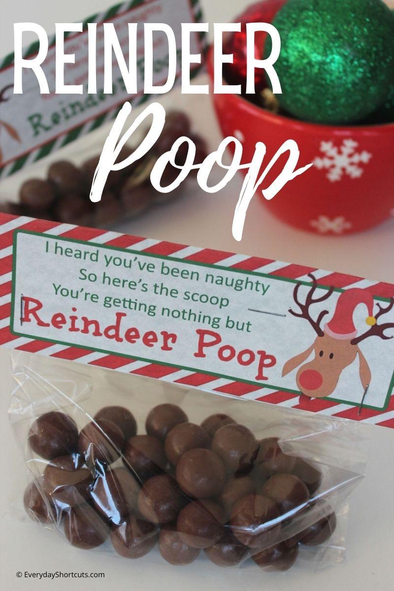 how to make reindeer poop