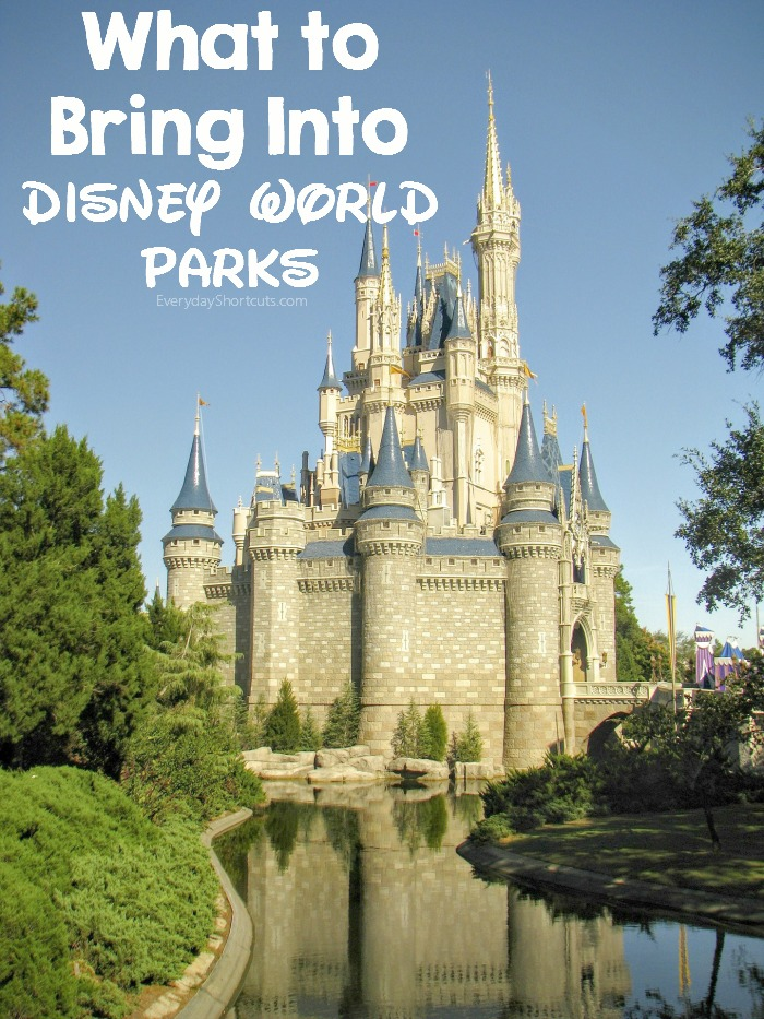 what-to-bring-into-disney-world-parks