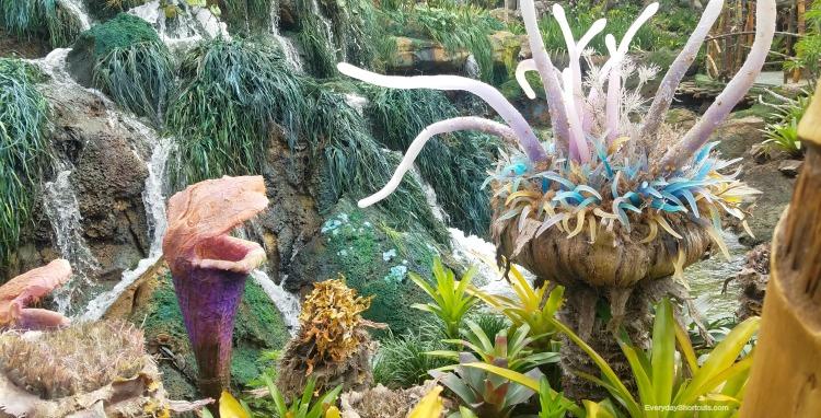 plants at Pandora