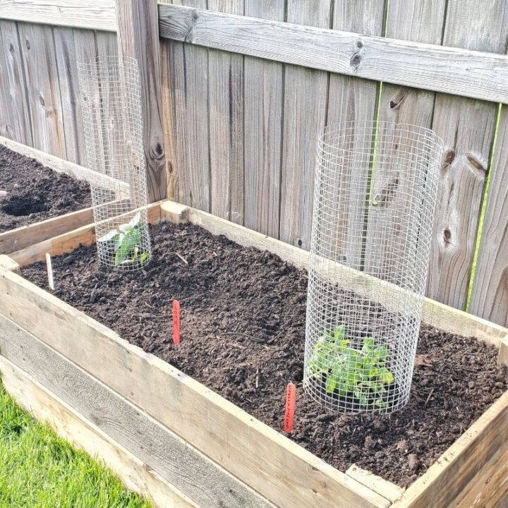 How to Build Raised Garden Beds from Wood Pallets