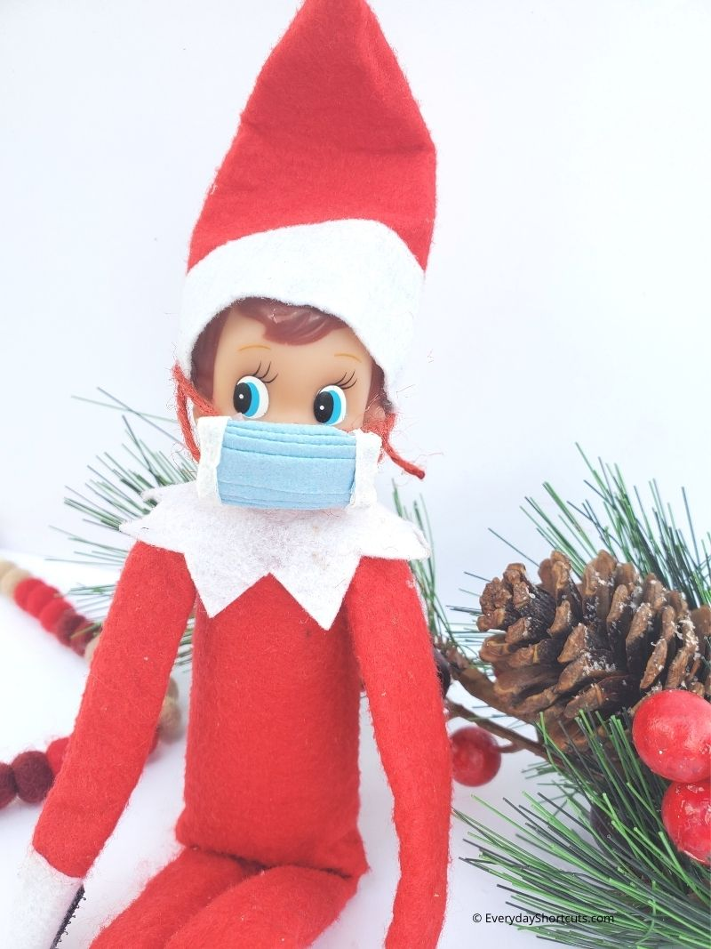 Elf on the Shelf Face Mask