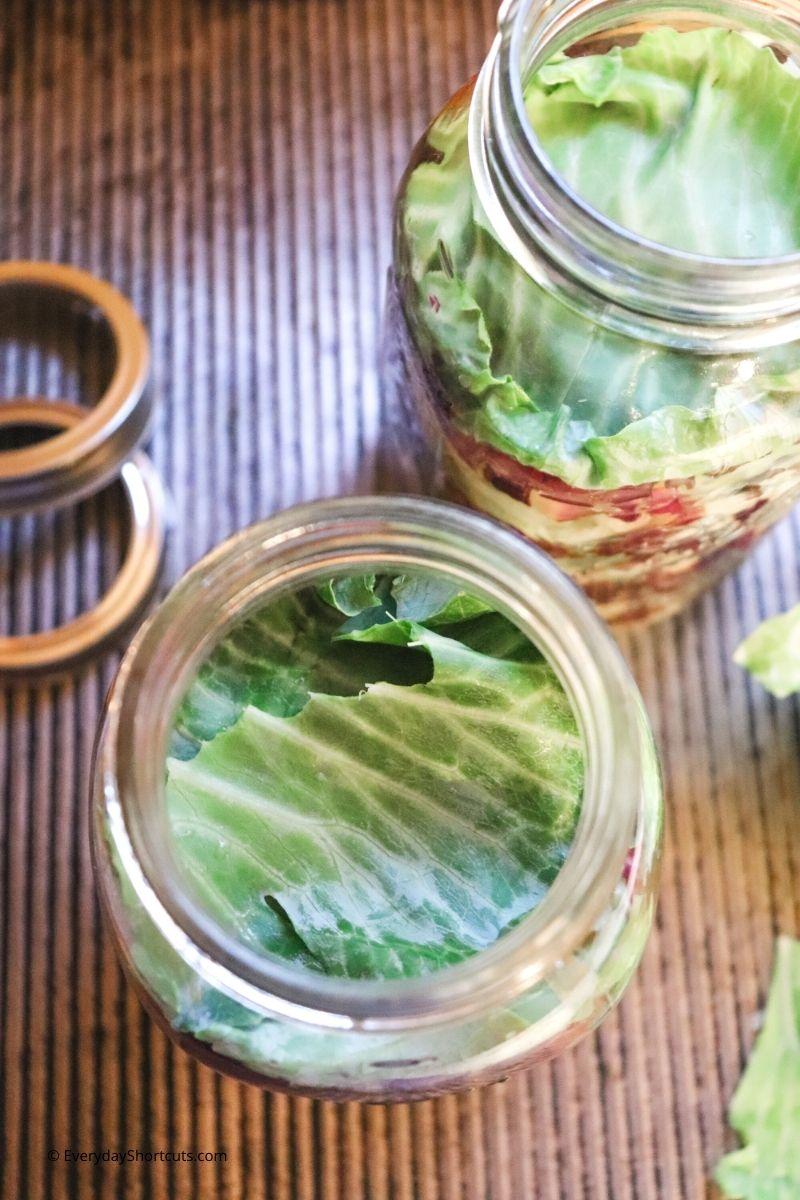 the best Red and Green Garlic Sauerkraut Recipe