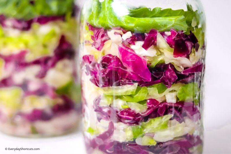 Red and Green Garlic Sauerkraut