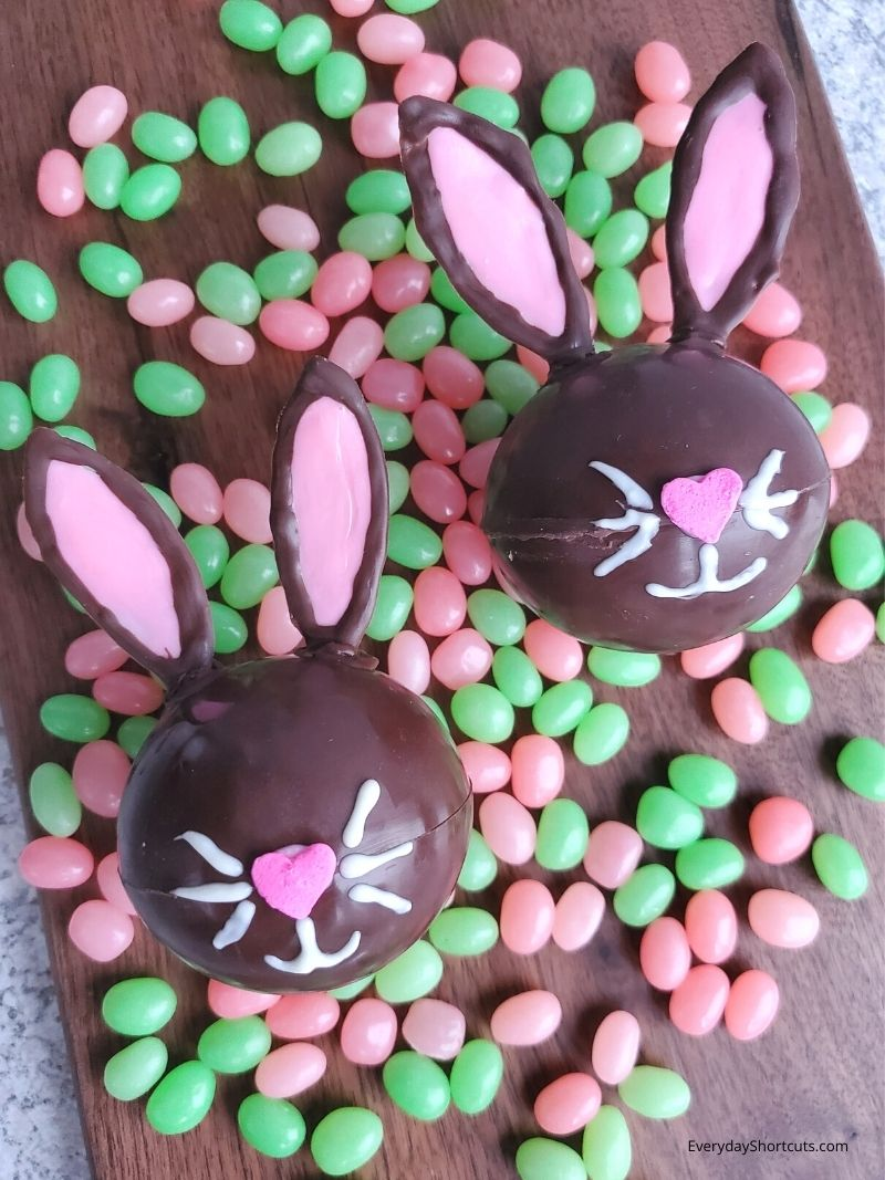 How to Make a Breakable Chocolate Bunny