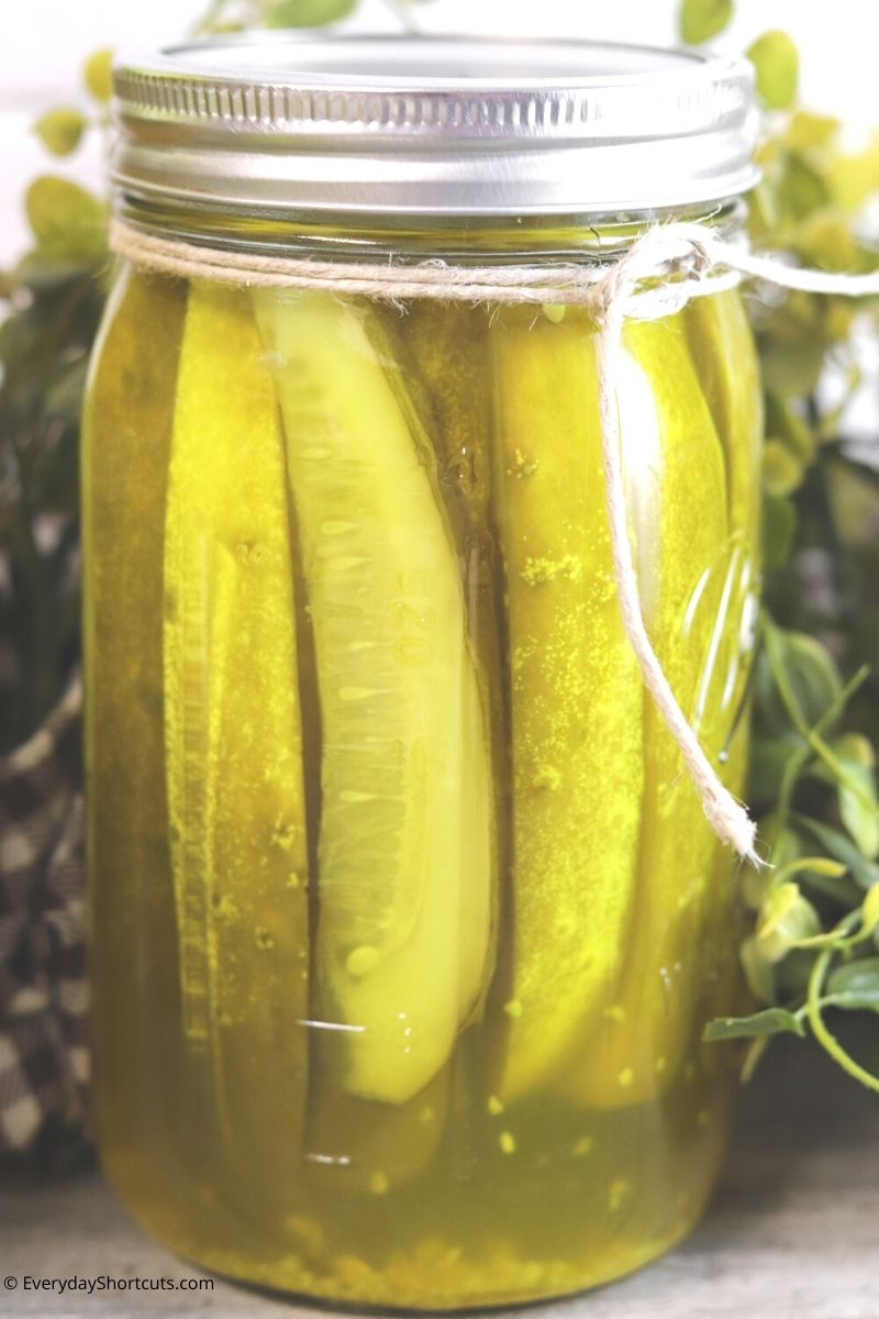 Kosher and Polish canning pickles