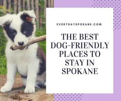 Looking for dog-friendly accommodations in Spokane? Here are 9 dog-friendly options for you, plus what to do with Fido while you're here!