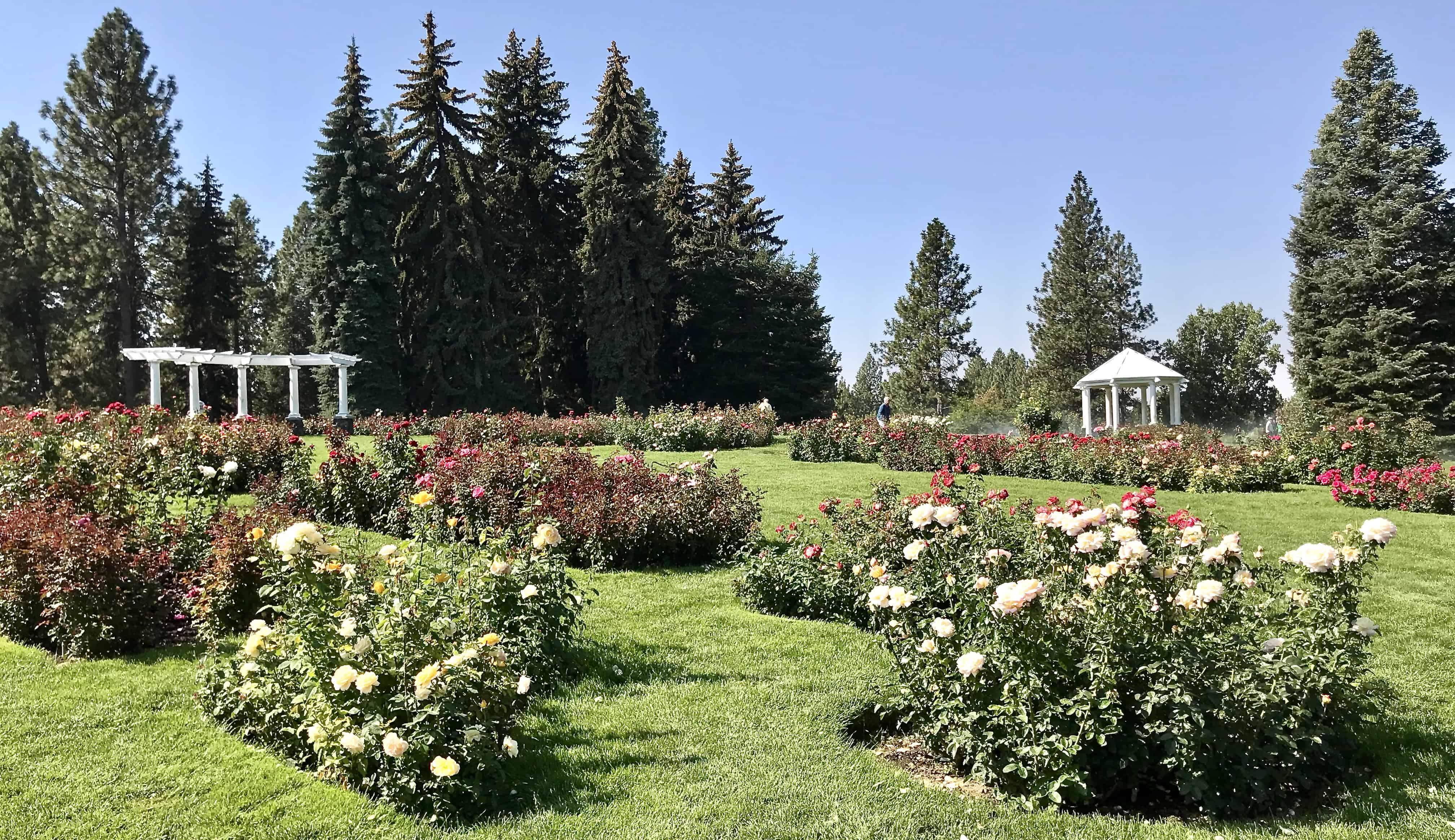 Manito Park A Beautiful Way To Spend An Afternoon Everyday Spokane