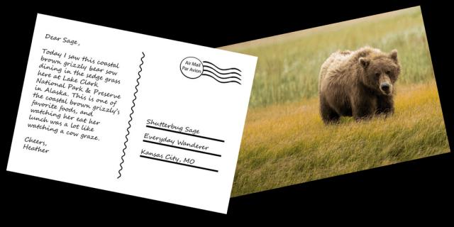 Everyday Postcards by Shutterbug Sage