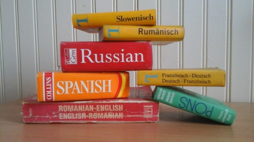 Overcome Language Barriers by having a phrasebook or dictionary