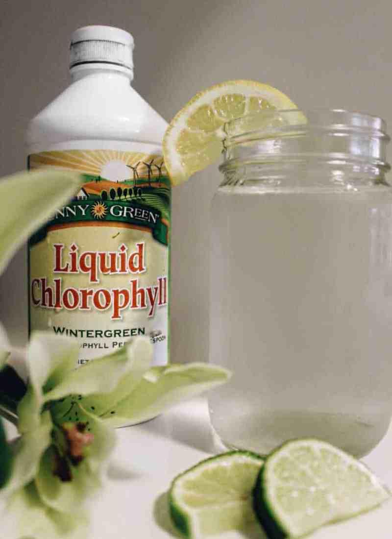 Sunny Green Liquid Chlorophyll - Flavor Wintergreen