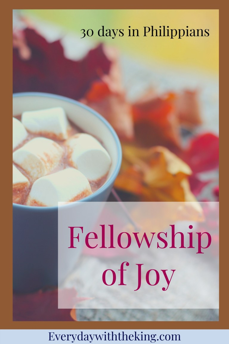 Fellowship of joy Pin