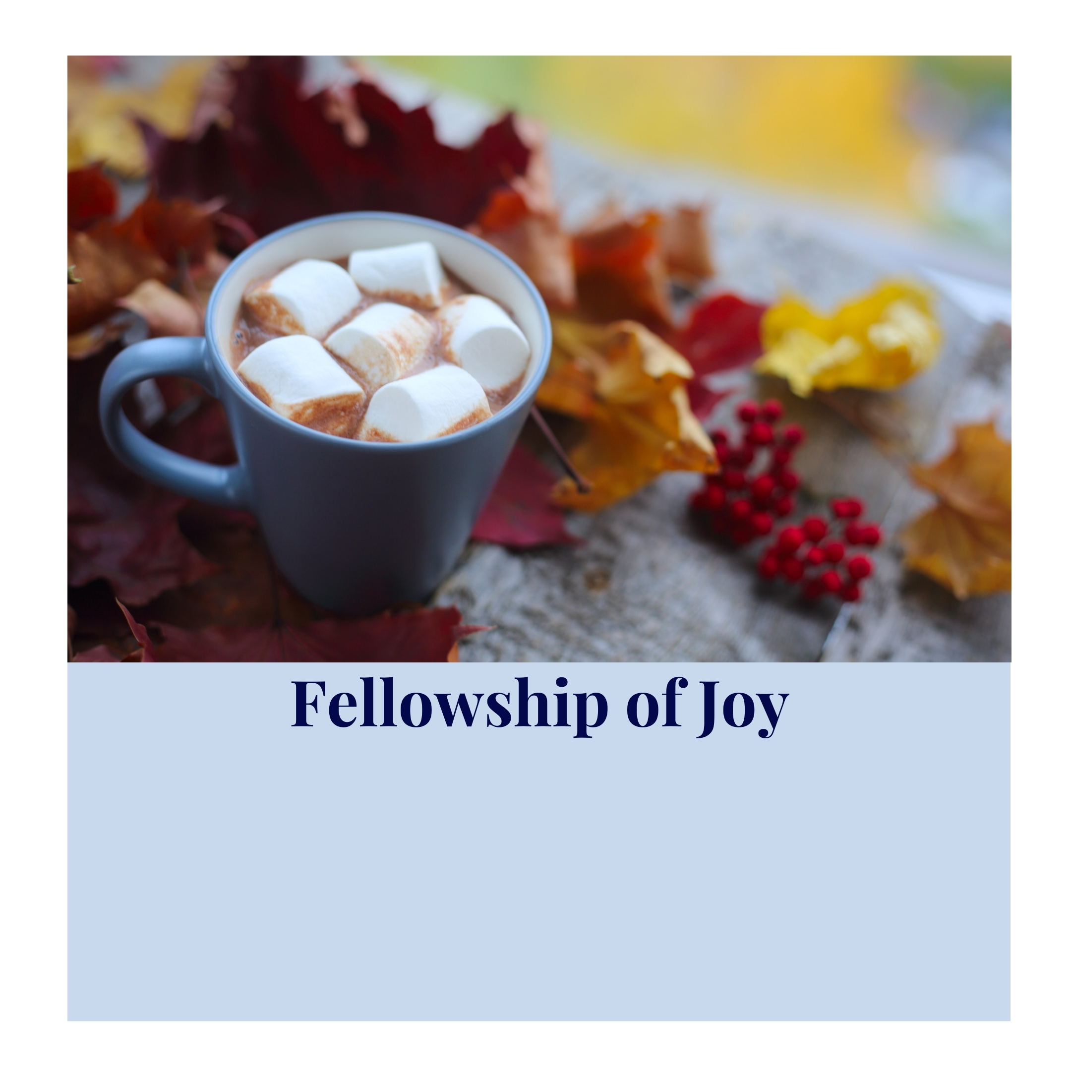 Fellowship of Joy