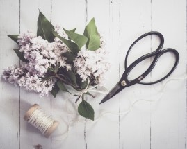 gfancy_lilacs,scissors_flatlay