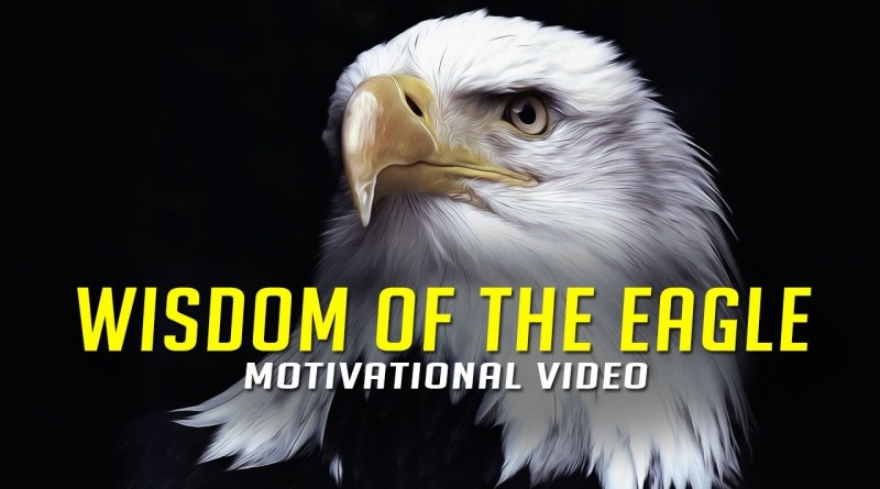 Wisdom Of The Eagle - Very Powerful Video