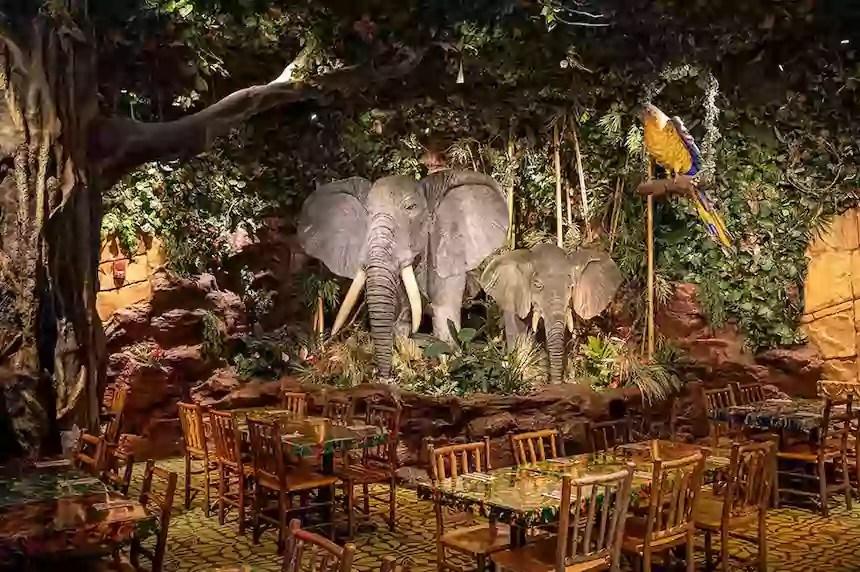 Rainforest Cafe Menu With Prices everymenuprices.com