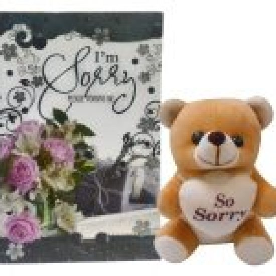 Amazon India Offer Natali Sorry Teddy And Greeting Card Gift Combo At Rs312