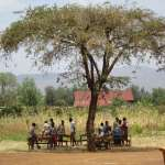 children under a tree