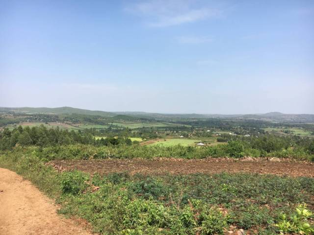 a view of farmland in rural Kenya