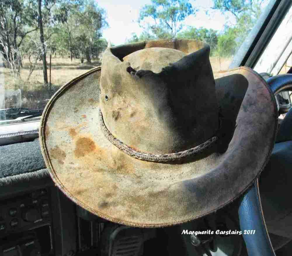 Ross Waterhole Normanton Queensland (1/6)