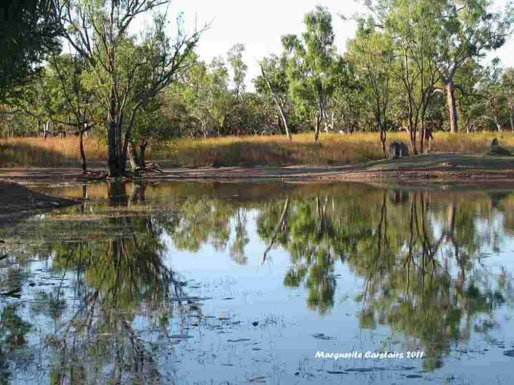 Ross Waterhole Normanton Queensland (4/6)