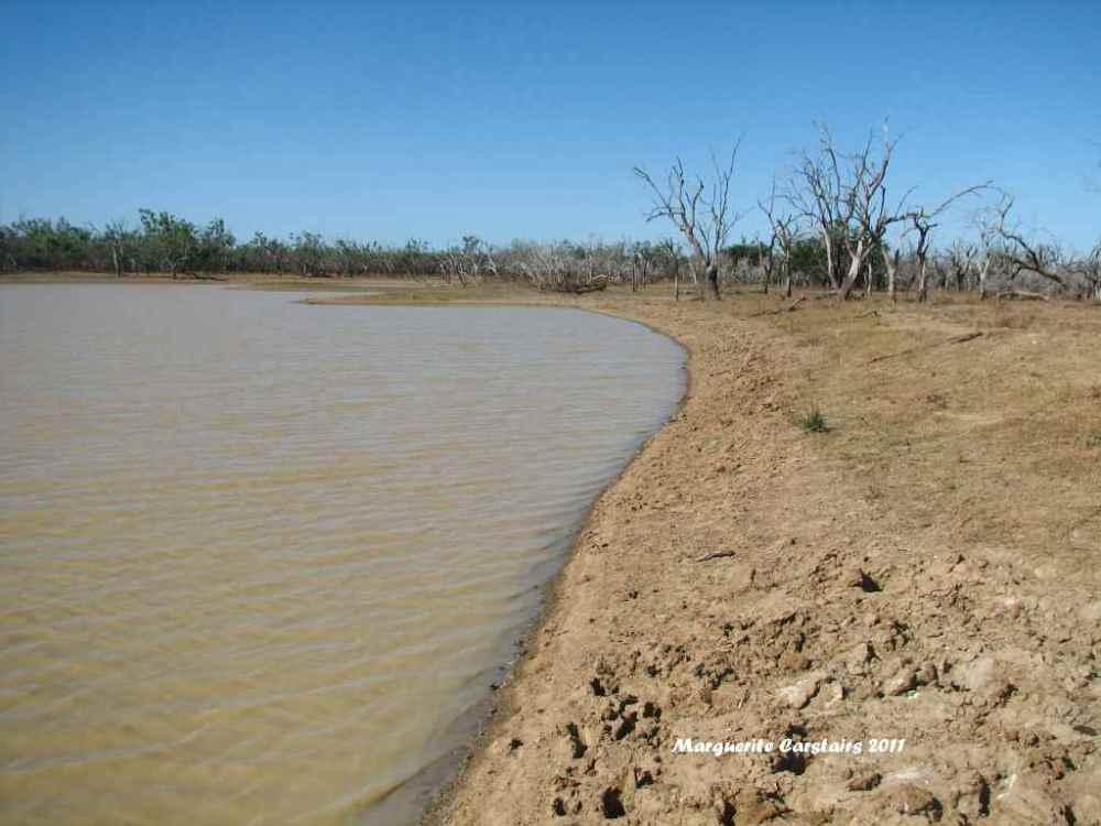 Ross Waterhole Normanton Queensland (6/6)