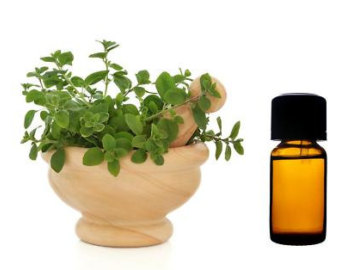oil of oregano acne