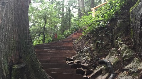 6 People You Could Meet at the Grouse Grind