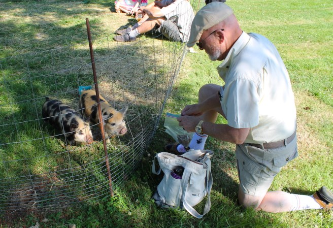 Kids of all ages enjoyed petting the livestock at Brookbank Farm on Summer Solstice.