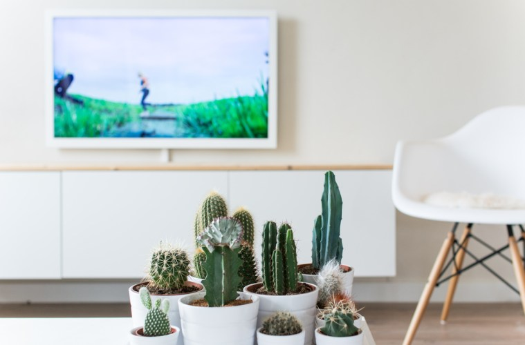 DIY: Witte TV • everythingelze.com