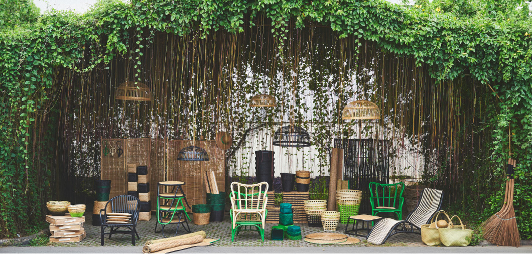 15x Eucalyptus Huis : Hippe planten everythingelze