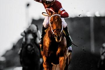 Gun Runner horse