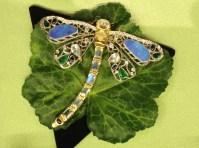 Carpe Diem - Dragonfly II from the Entomology 101 Series