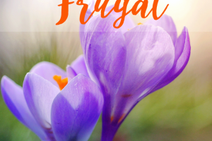 It's not hard to start being frugal, even if you hate the word. You can become frugal today with these tips without having to sacrifice your lifestyle.