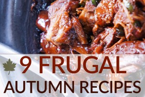In need of some hearty, frugal autumn recipes to enjoy? We have a collection of soups, stews, pumpkin & squash recipes so you can start cooking and baking.