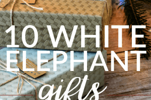 Does your office or family require everyone to get white elephant gifts? Here are some quick and easy ideas everyone will enjoy that are under $25.