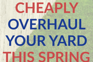 You don't have to spend a lot of money to overhaul your yard this spring. Use these tips and ideas to create a beautiful yard this year.