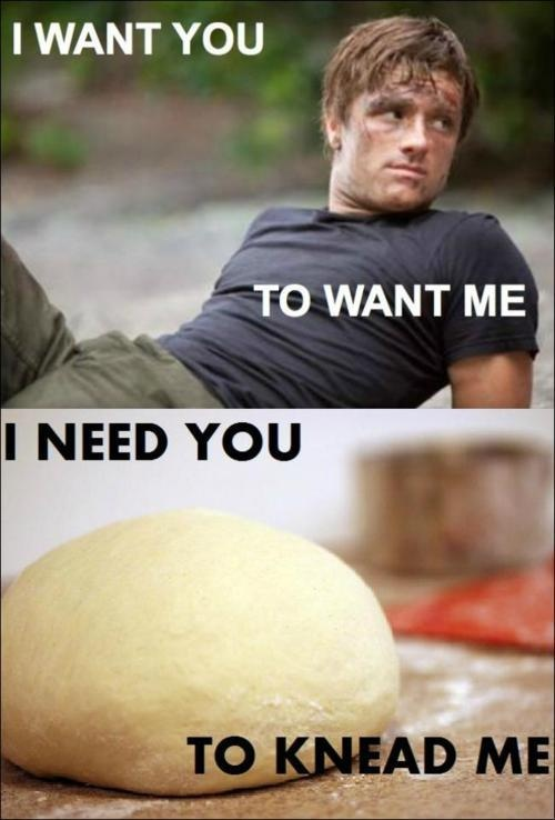 30 Funniest The Hunger Games Memes That Will Make You Laugh Hard